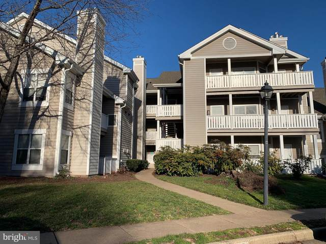 14322 Climbing Rose Way #301, CENTREVILLE, VA 20121 (#VAFX1175018) :: Bic DeCaro & Associates