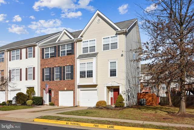 45534 Lake Haven Terrace, STERLING, VA 20165 (#VALO428596) :: The Sky Group