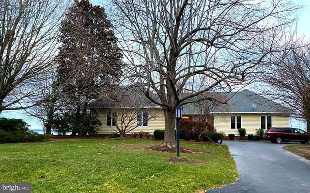 2907 Cox Neck Road E, CHESTER, MD 21619 (#MDQA146446) :: AJ Team Realty