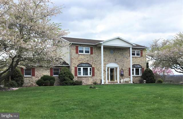 8296 Stone Bridge Road, GREENCASTLE, PA 17225 (#PAFL177434) :: TeamPete Realty Services, Inc