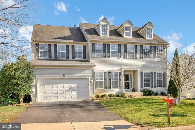 882 Woodcrest Loop, CULPEPER, VA 22701 (#VACU143374) :: Bruce & Tanya and Associates