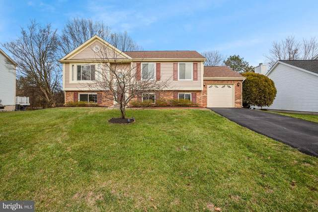 3862 Beech Down Drive, CHANTILLY, VA 20151 (#VAFX1175276) :: The Redux Group
