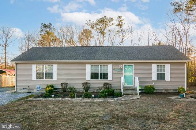 35974 Johnson Lane, SELBYVILLE, DE 19975 (#DESU175630) :: CoastLine Realty