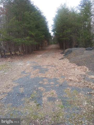 Courthouse Road, LOUISA, VA 23093 (#VALA122514) :: The Piano Home Group
