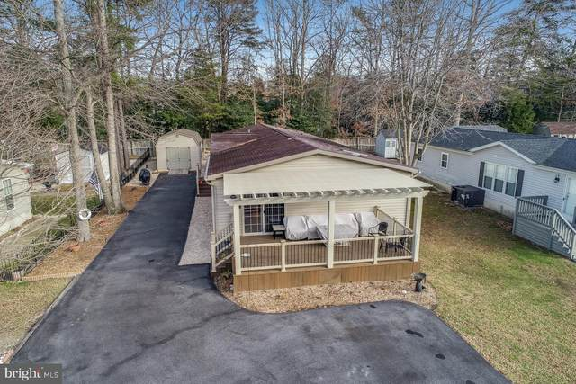 113 White Pine Drive, MILLSBORO, DE 19966 (#DESU175696) :: RE/MAX Coast and Country
