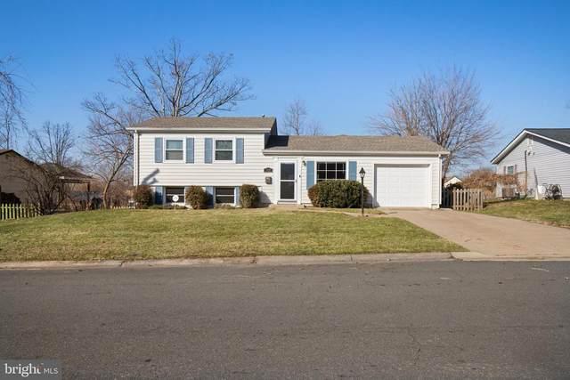 705 S Alder Avenue, STERLING, VA 20164 (#VALO428698) :: Great Falls Great Homes