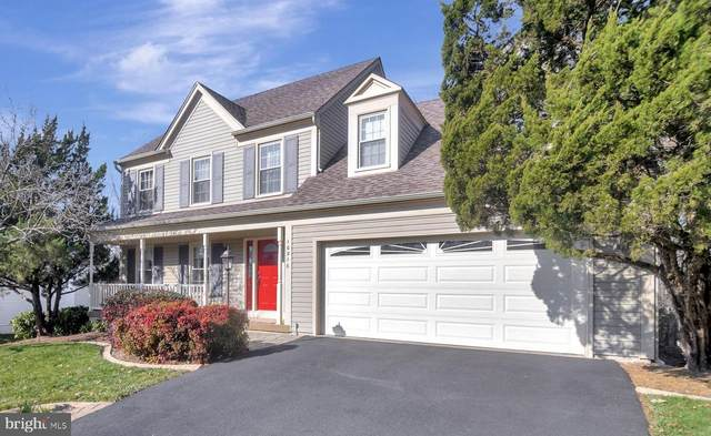 10216 Winged Elm Circle, MANASSAS, VA 20110 (#VAPW512854) :: The Dailey Group
