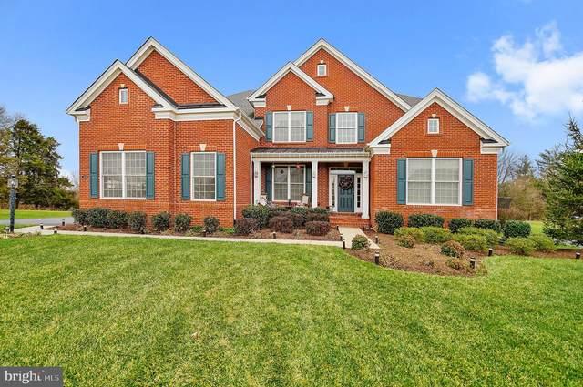 41529 Deer Point Court, ALDIE, VA 20105 (#VALO428704) :: John Smith Real Estate Group