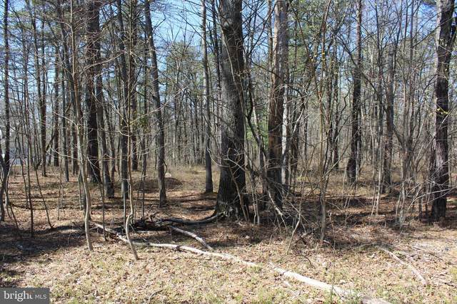 LOT 18 Pine Tree Drive, NEWVILLE, PA 17241 (#PACB131238) :: Liz Hamberger Real Estate Team of KW Keystone Realty