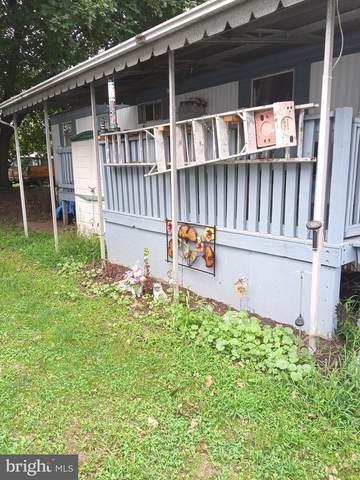 120 Grimm Lane, MIDDLETOWN, PA 17057 (#PADA129250) :: Liz Hamberger Real Estate Team of KW Keystone Realty