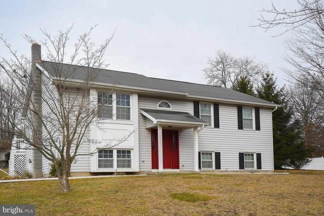 24801 Hickory Hill Lane, RAWLINGS, MD 21557 (#MDAL136068) :: LoCoMusings