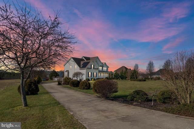 338 Old Line Drive, CENTREVILLE, MD 21617 (MLS #MDQA146470) :: Maryland Shore Living | Benson & Mangold Real Estate