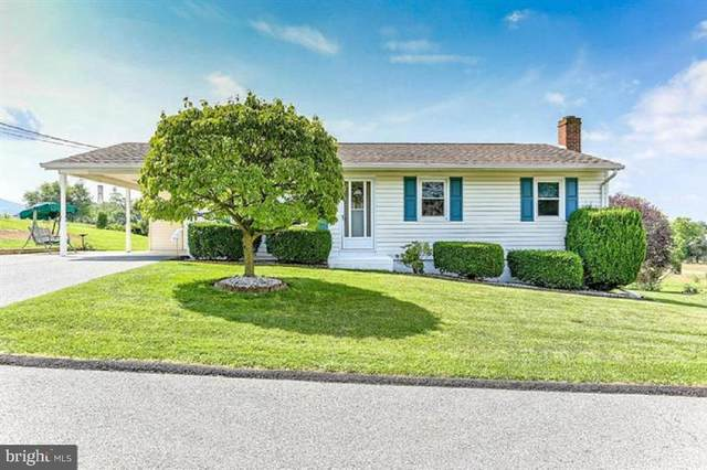 208 Young Avenue, BOONSBORO, MD 21713 (#MDWA177112) :: The MD Home Team