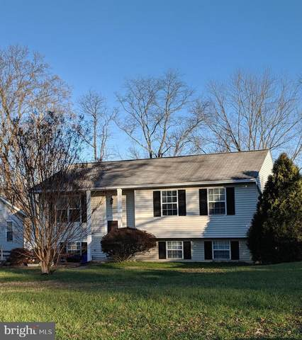 7423 2ND AVENUE, SYKESVILLE, MD 21784 (#MDCR201934) :: The Sky Group