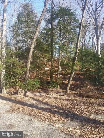 29192 Delightful Springs Lane, MECHANICSVILLE, MD 20659 (#MDSM173892) :: The Maryland Group of Long & Foster Real Estate