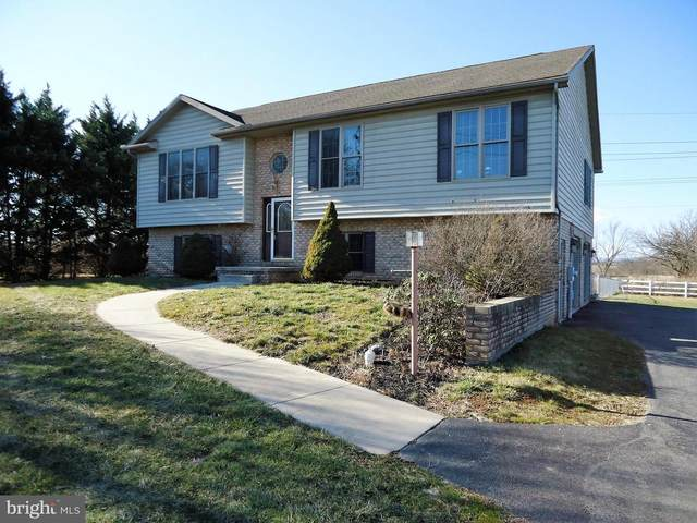 11655 Williamsport Pike, GREENCASTLE, PA 17225 (#PAFL177470) :: TeamPete Realty Services, Inc