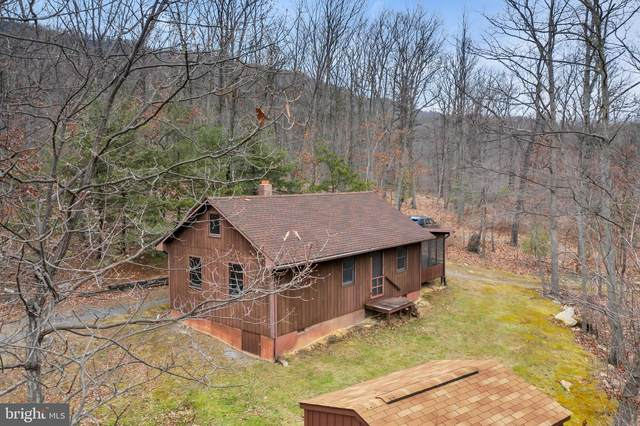 Hunter Road, MAURERTOWN, VA 22644 (#VASH121250) :: Dart Homes