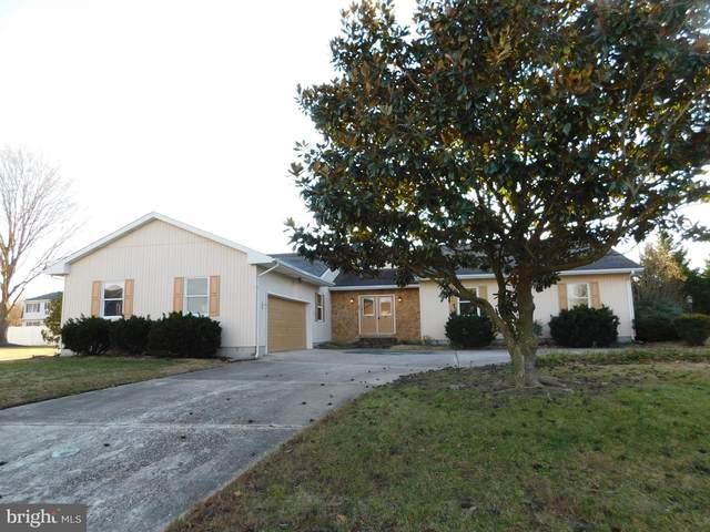 16 N Horseshoe Drive, MILFORD, DE 19963 (#DESU175770) :: Bright Home Group