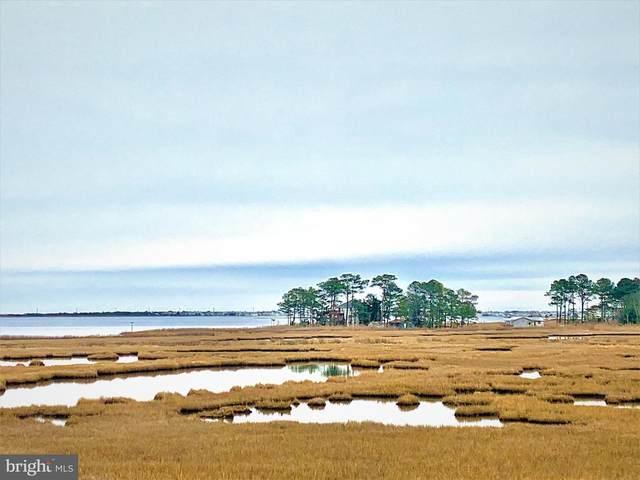 38314 Beachview Court #1077, SELBYVILLE, DE 19975 (#DESU175810) :: Atlantic Shores Sotheby's International Realty