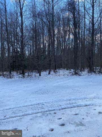 14513 Rock Creek Road, BRANDYWINE, MD 20613 (#MDPG593690) :: Lori Jean, Realtor