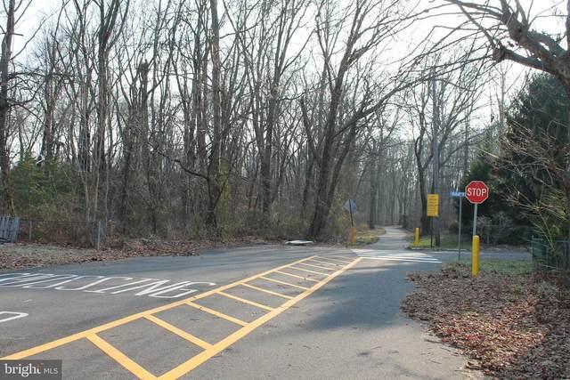 New Jersey Avenue, BORDENTOWN, NJ 08620 (MLS #NJBL389644) :: The Sikora Group