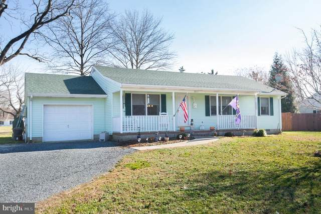 3811 Seymour Drive, TRAPPE, MD 21673 (#MDTA140154) :: The Mike Coleman Team