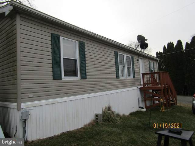 1 Apache Run, BARTO, PA 19504 (#PABK372432) :: Sail Lake Realty