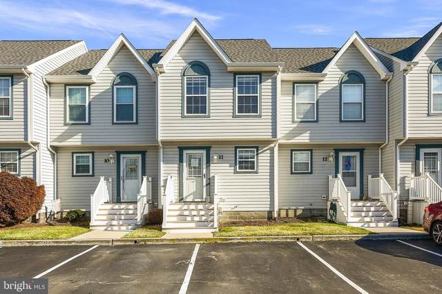 33697 Briar Ct S #11, FRANKFORD, DE 19945 (#DESU175900) :: Atlantic Shores Sotheby's International Realty