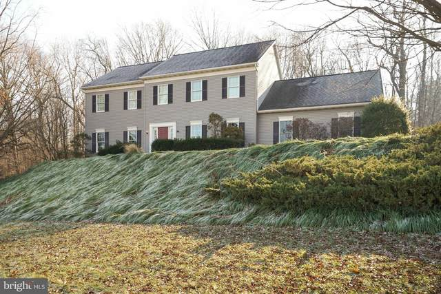 55 Peach Lane, RONKS, PA 17572 (#PALA176068) :: Liz Hamberger Real Estate Team of KW Keystone Realty