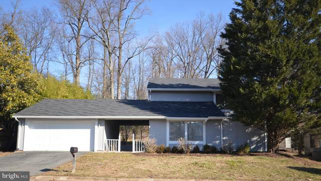 112 Willow Place, STERLING, VA 20164 (#VALO428952) :: Advon Group
