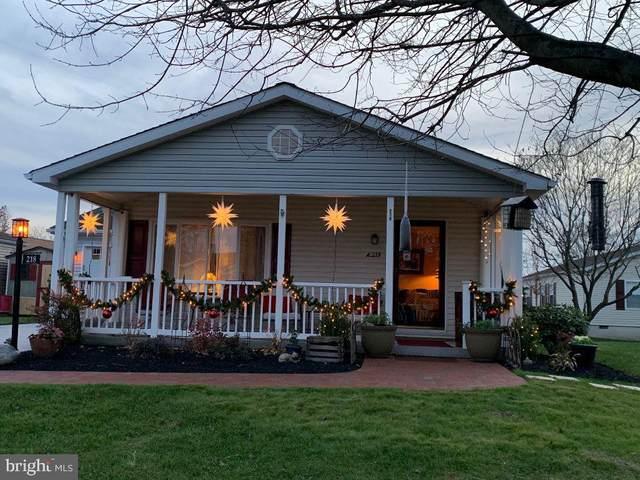 218 Dove Ct, NEW HOPE, PA 18938 (#PABU518848) :: Bob Lucido Team of Keller Williams Integrity