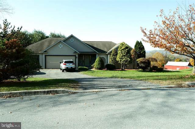 16 Helfred Landing Road, HAMBURG, PA 19526 (#PABK372448) :: The Dailey Group
