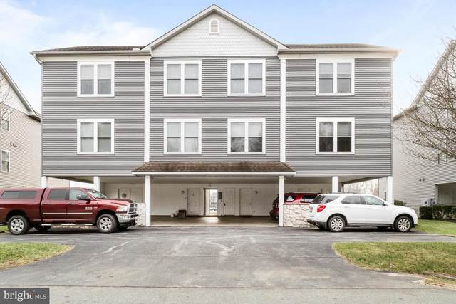 201 NE Isle Drive 86B, NORTH EAST, MD 21901 (#MDCC172950) :: The Piano Home Group