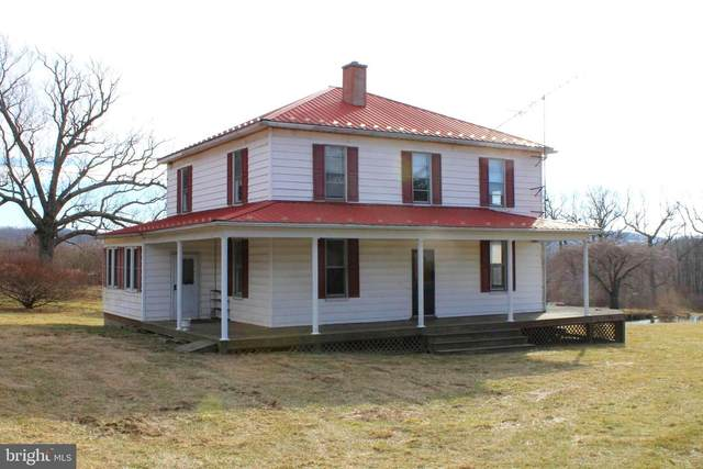 3346 Elk Garden Hwy, ELK GARDEN, WV 26717 (#WVMI111670) :: The Yellow Door Team
