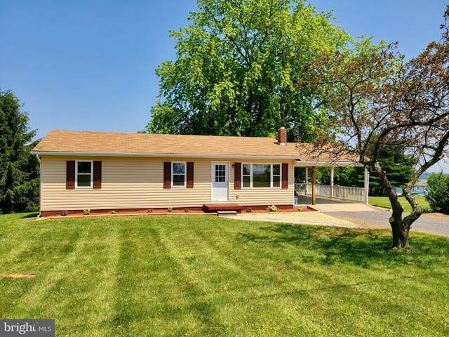 54 Summit Drive, ROMNEY, WV 26757 (#WVHS115204) :: SP Home Team
