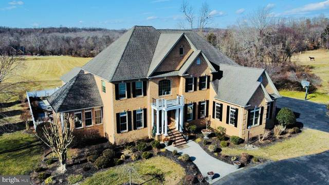 8740 Hill Spring Drive, LA PLATA, MD 20646 (#MDCH220982) :: The Sky Group