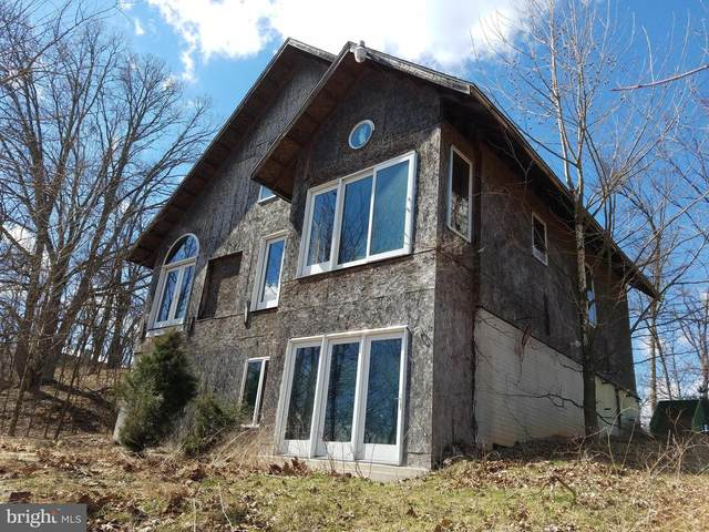 203 Shawnee Hill Drive, OLD FIELDS, WV 26845 (#WVHD106556) :: The Piano Home Group