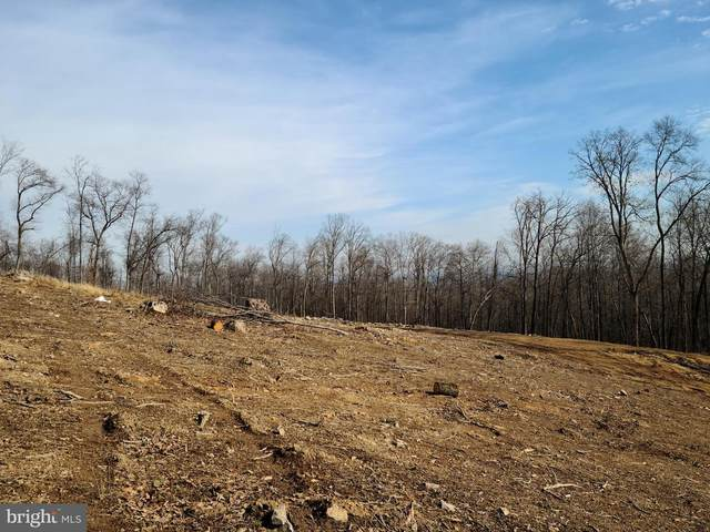 Blairs Valley Road, CLEAR SPRING, MD 21722 (#MDWA177202) :: LoCoMusings