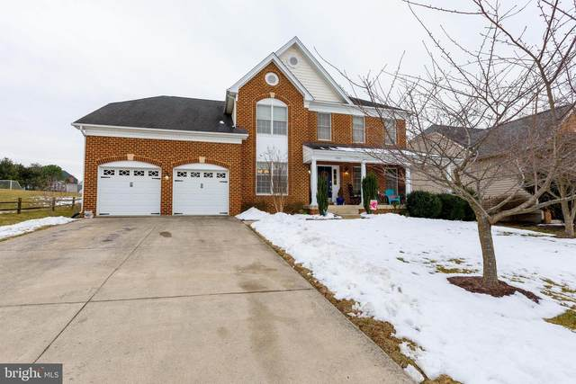 903 Crestview Terrace, WINCHESTER, VA 22601 (#VAWI115634) :: Charis Realty Group