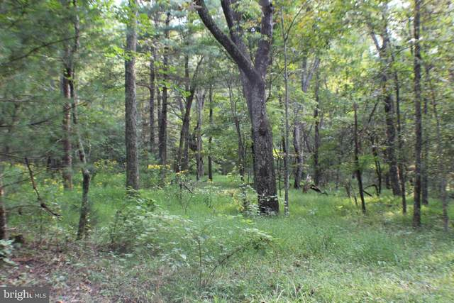 Lot 14 North Side Of Camp Run Road, FORT SEYBERT, WV 26802 (#WVPT101624) :: Pearson Smith Realty