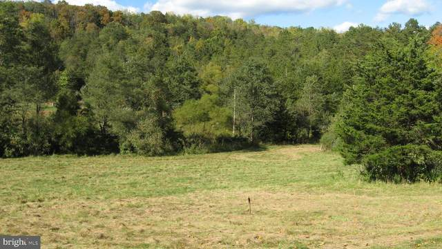 Off Of Sugar Hill Rd, MAURERTOWN, VA 22644 (#VASH121278) :: ExecuHome Realty