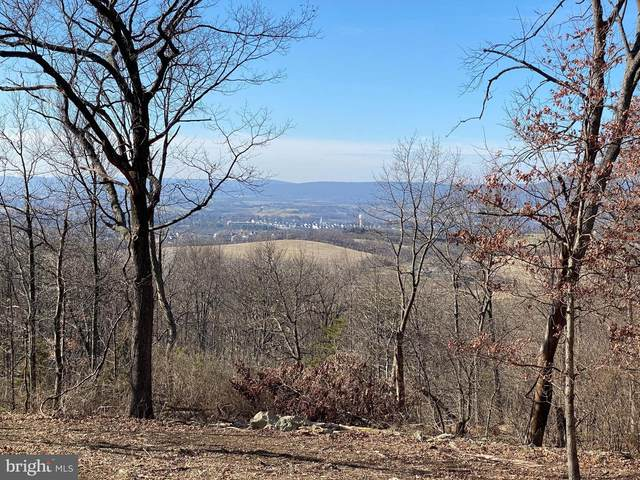 Shookstown Road, FREDERICK, MD 21702 (#MDFR276604) :: Charis Realty Group