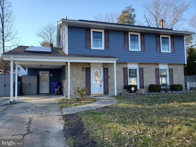 13 Blackpool Circle, WALDORF, MD 20602 (#MDCH221024) :: The Team Sordelet Realty Group