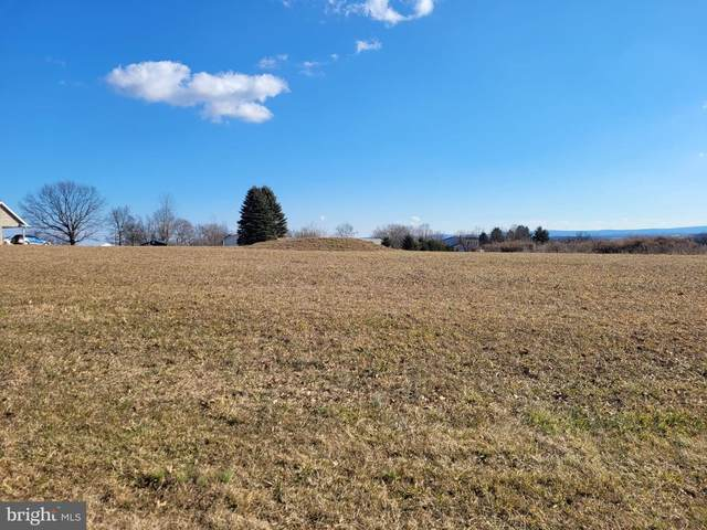 295 Mohawk Road Lot 11, NEWVILLE, PA 17241 (#PACB131396) :: The Heather Neidlinger Team With Berkshire Hathaway HomeServices Homesale Realty