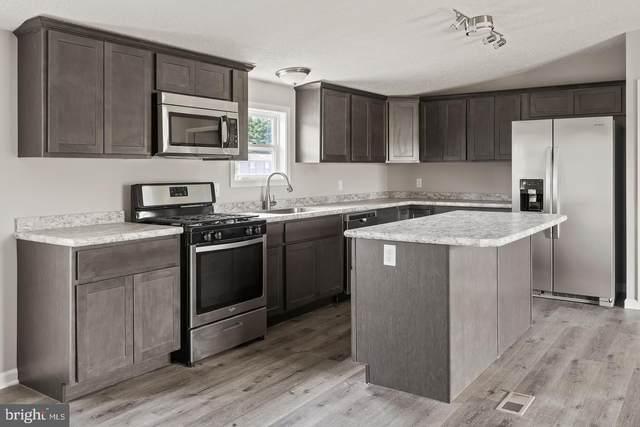 10 John B Drive, MILLSBORO, DE 19966 (#DESU176058) :: Linda Dale Real Estate Experts