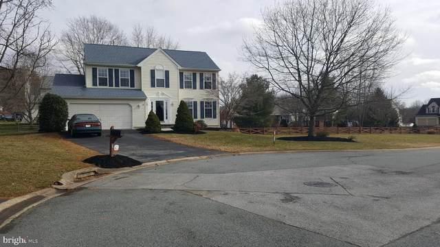 16 Hazelwood Drive, NEWARK, DE 19702 (#DENC519538) :: Linda Dale Real Estate Experts