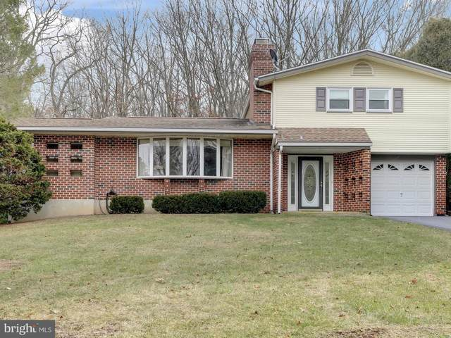 693 Stallion Drive, AUBURN, PA 17922 (#PASK134014) :: Keller Williams Realty - Matt Fetick Team