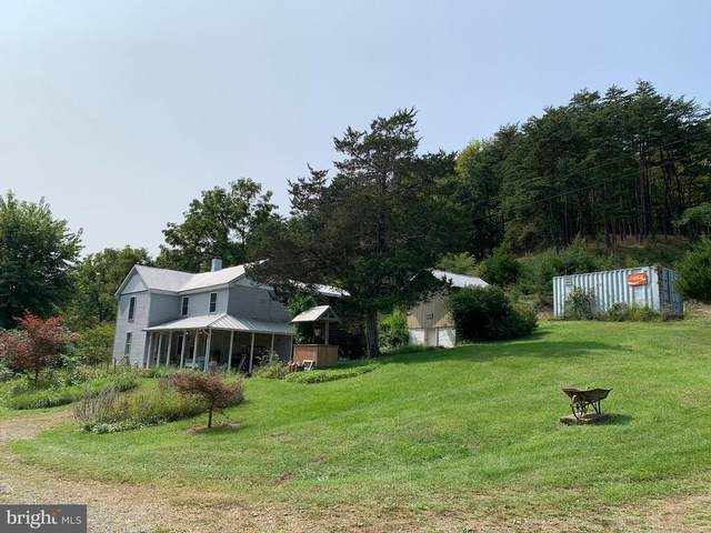 734 Hartman Lane, BERKELEY SPRINGS, WV 25411 (#WVMO117962) :: The Gold Standard Group