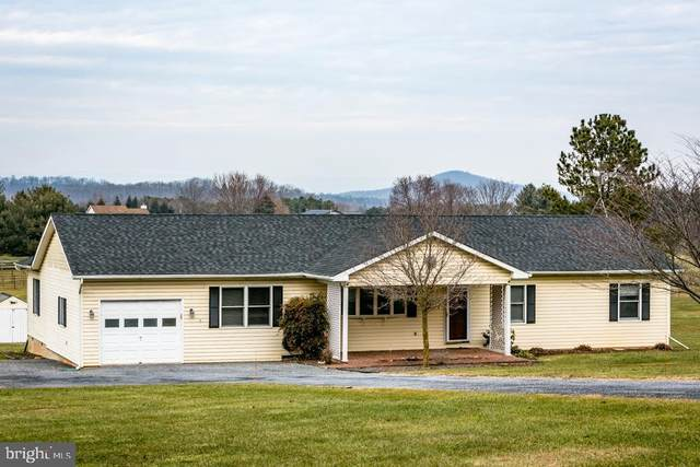 1008 Shipwreck Drive, NEW MARKET, VA 22844 (#VASH121306) :: Talbot Greenya Group