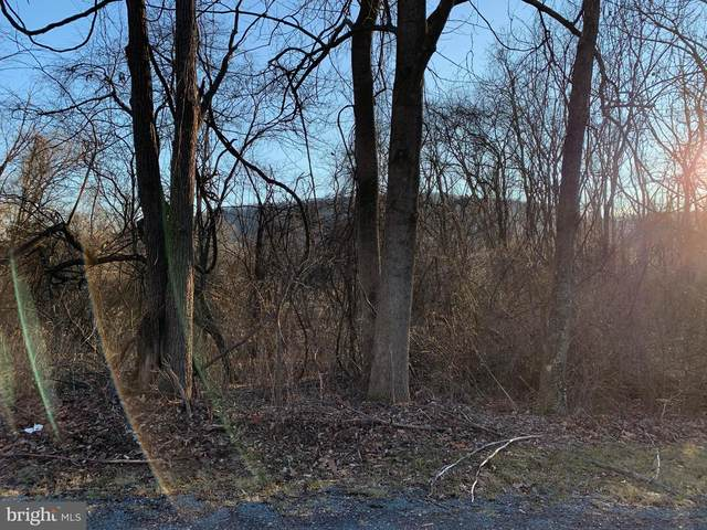 3 Summer Trail, FAIRFIELD, PA 17320 (#PAAD114636) :: Colgan Real Estate